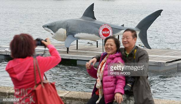Chinese tourists pose for a friend taking photographs as a gigantic 74 metre Great White Shark replica 'floats' into Sydney Harbour on November 26...