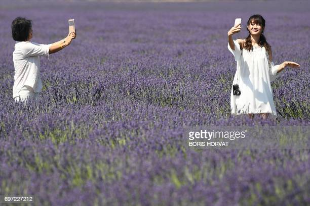 Chinese tourists make selfies in a lavender field in Valensole southern France on June 18 2017 / AFP PHOTO / BORIS HORVAT