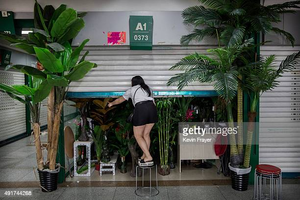 Chinese trader closes her stall selling wholesale plastic plants at the end of the day at the Yiwu International Trade City on September 24 2015 in...