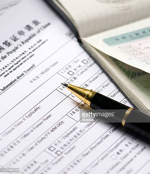 Chinese visa form