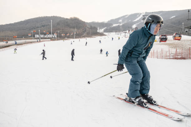 Chinese winter sport industry