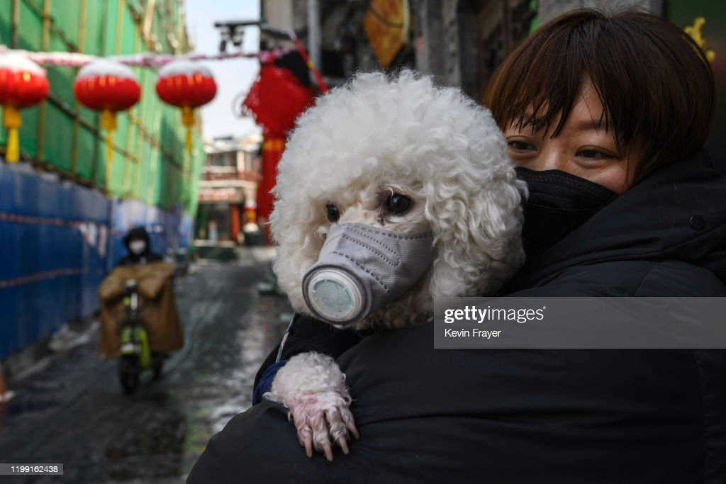 Concern In China As Mystery Virus Spreads : ニュース写真
