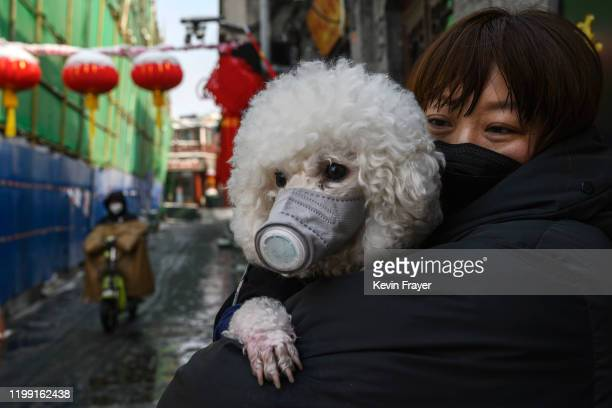 Chinese woman holds her dog that is wearing a protective mask as well as they stand in the street on February 7, 2020 in Beijing, China. The number...