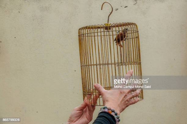 Chinese woman releases a bird as she performs a prayer during The Nine Emperor Gods Festival inside the temple on October 24 2017 in Kuala Lumpur...