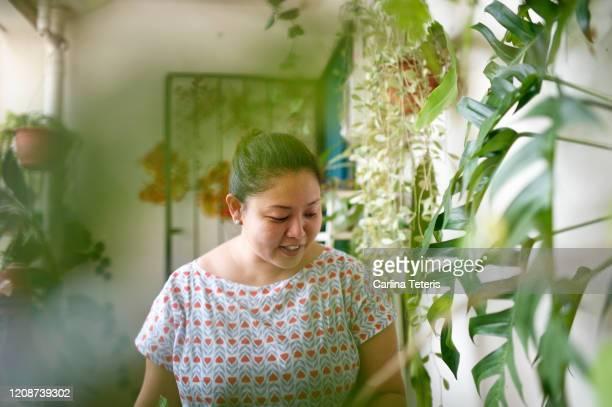chinese woman with her house plants - showus stock-fotos und bilder