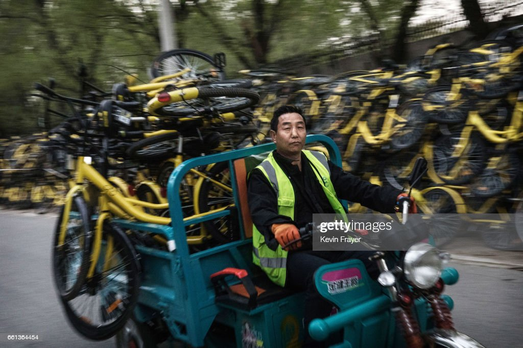 A Chinese worker from the bike share company Ofo Inc. transports bicycles collected from the streets to a repair depot for the company on March 30, 2017 in Beijing, China. The popularity of bike shares has exploded in the past year with more than two dozen providers now battling for market share in major cities across China. The bikes are hailed as an efficient, cheap, and environmentally-friendly solution for commuters, where riders unlock the stationless bicycles using a mobile phone app, drop them anywhere for the next user, and spend as little as 1 yuan ($0.15) per hour. Given the bikes have several users a day - some of them inexperienced riders who swerve into traffic - they are often damaged, vandalized, or abandoned. Companies like Ofo routinely collect the battered two-wheelers and bring them to a makeshift depot that is part repair shop, part graveyard where they are either salvaged or scrapped. The bike shares are powering a cycling revival of sorts in a country once known as the 'Kingdom of Bicycles'. In the early years of Communist China, most Chinese aspired to own a bicycle as a marker of achievement. When the country's economic transformation made cars a more valued status symbol, the bicycle - a Chinese cultural icon - was mocked as a sign of backwardness. The bike share craze is also a boon for manufacturers who are now mass producing over a million bikes a month to meet demand, and the number of shared bike users will reach 50 million in China by the end of the year, according to Beijing-based BigData Research. Not everyone is cheering the revival though, as municipal officials are drafting new regulations to control the chaotic flood of bicycles on streets and sidewalks.