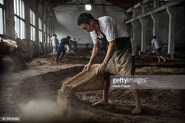 Chinese worker prepares sorghum for the first fermentation to be used in locally made wine called baijiu at the Maopu Health Liquor Co. Distillery on...