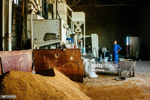 A Chinese worker watches a milling machine in a rice processing plant operated by Wanbao Grains Oils Co a Chinese company in the Limpopo Valley near...