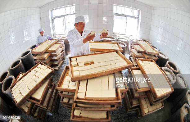 Chinese workers check the quality of tofu before making white fermented tofu on May 3 2018 in Qinhuangdao Hebei Province of China