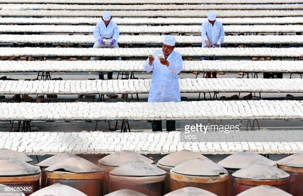 Chinese workers dry tofu before making white fermented tofu on May 3 2018 in Qinhuangdao Hebei Province of China