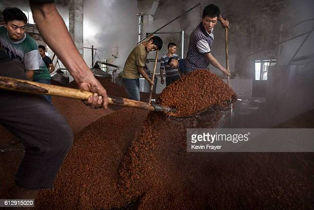 Chinese workers shovel steamed sorghum as it is prepared for the first fermentation to be used in locally made wine called baijiu at the Maopu Health...