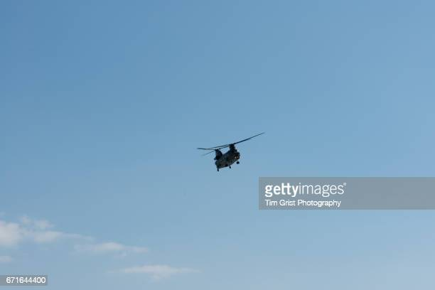 chinook helicopter flying - chinook dog stock photos and pictures