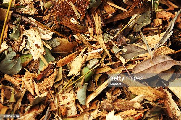 chipped tree branches - mulch stock pictures, royalty-free photos & images