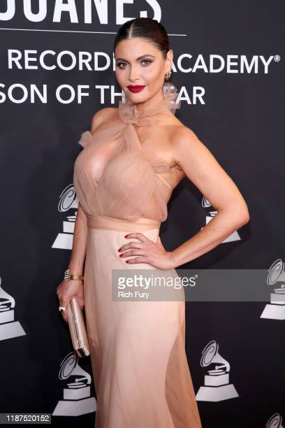Chiquinguirá Delgado attends the Latin Recording Academy's 2019 Person of the Year gala honoring Juanes at the Premier Ballroom at MGM Grand Hotel &...