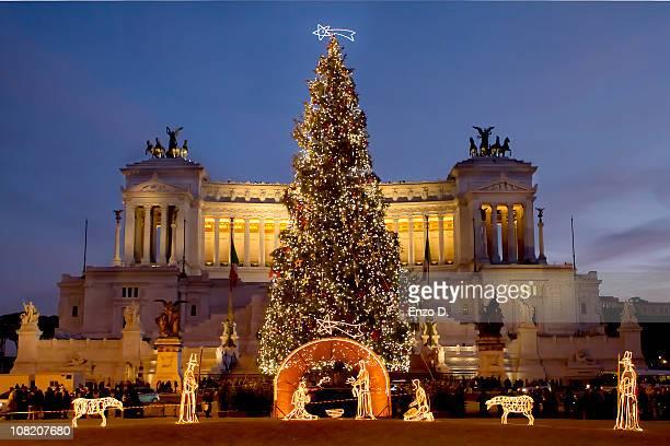 chirstmas tree in venice square, rome - italy - natale di roma foto e immagini stock
