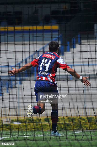 Chivas' Javier Hernandez celebrates a goal during a match against Pumas valid for the 2009 Clausura tournament the closing stage of the Mexican...