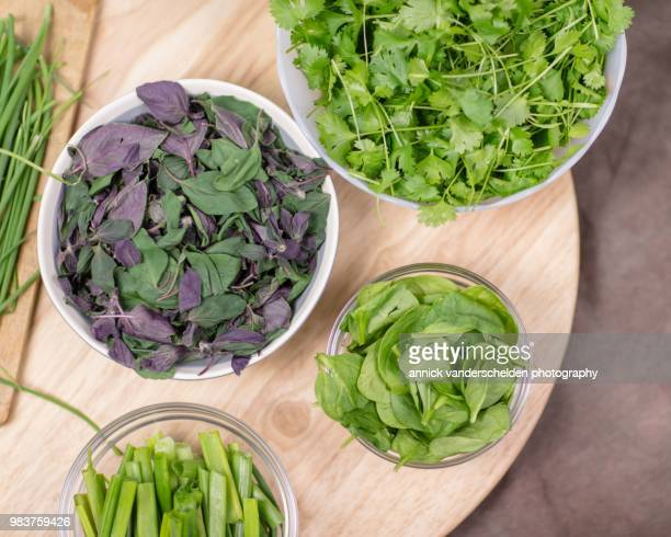 Chives, coriander, spring onion, spinach and Ocimum basilicum 'Magic Mountain'