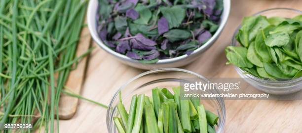 Chives, spring onion, spinach and Ocimum basilicum 'Magic Mountain'