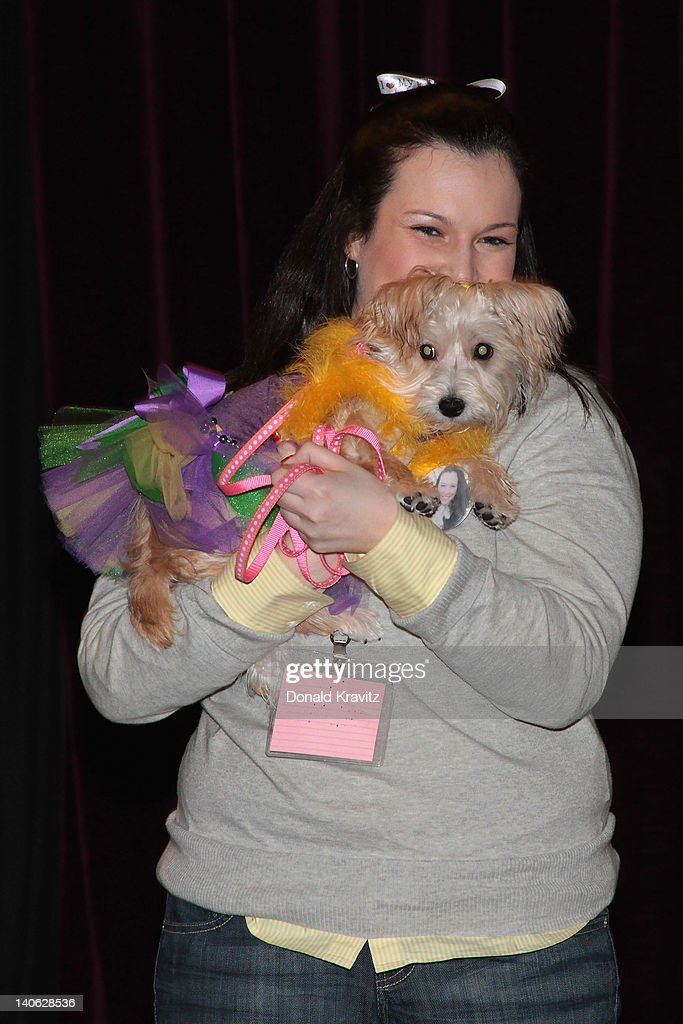 Chloe a Morkie (Maltese Yorkie mix) is held by owner Michelle Devine as they attend the one year anniversary of being pet-friendly at the Showboat Atlantic City on March 3, 2012 in Atlantic City, New Jersey.