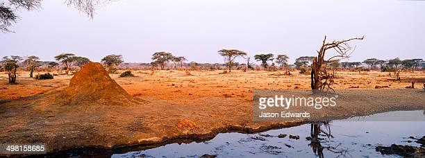 A dwindling waterhole surrounded by a dry season savannah plain at sunset.