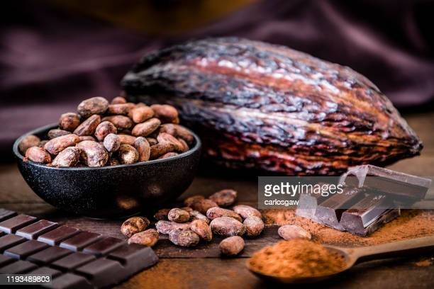 chocolate bar, cocoa powder, cocoa beans and cocoa pod - chocolate stock pictures, royalty-free photos & images