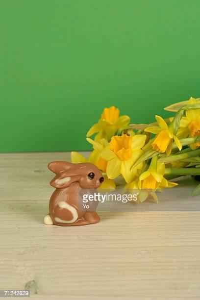 Chocolate bunny next to daffodils