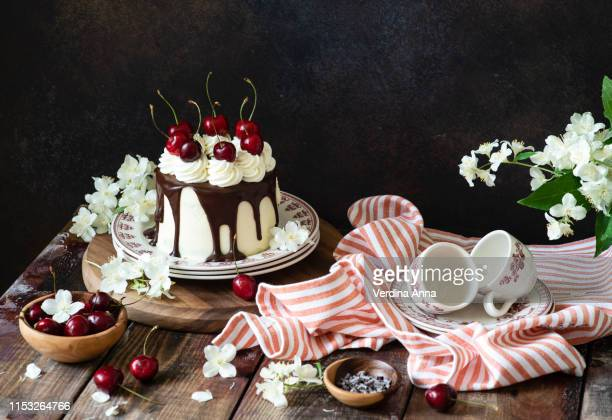 chocolate cherry cake - anna verdina stock photos and pictures