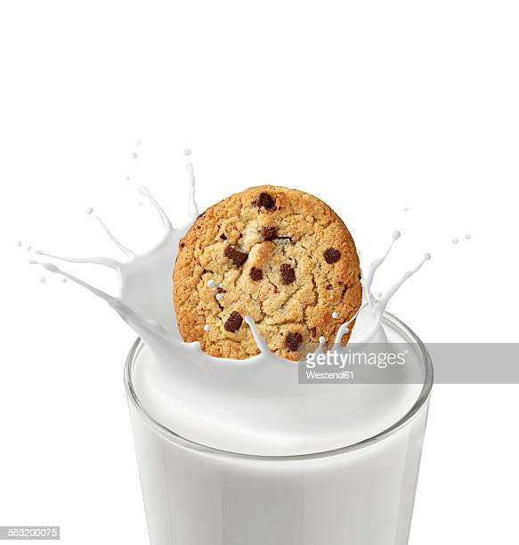 Chocolate cookie falling in glass of milk in front of white background
