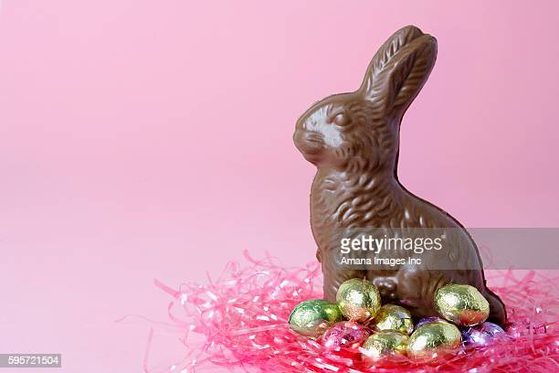 Chocolate Easter Bunny and Candy Eggs