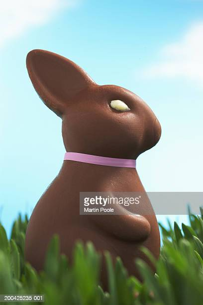 Chocolate Easter bunny facing in grass, side view, close-up