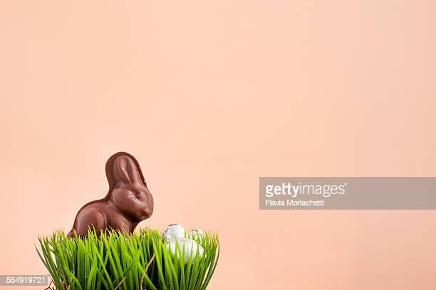 Chocolate Easter bunny in grass with eggs