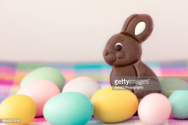 chocolate easter bunny - easter stock pictures, royalty-free photos & images