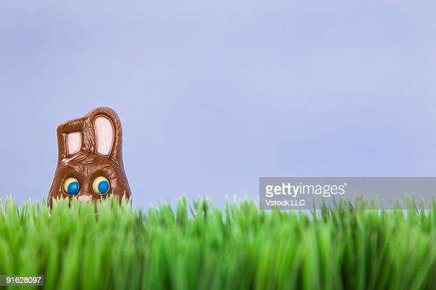 a chocolate easter bunny - chocolate bunny stock pictures, royalty-free photos & images