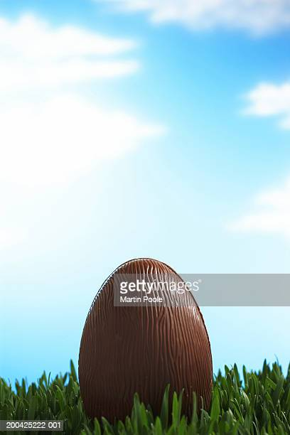 Chocolate Easter egg in grass, sky in background