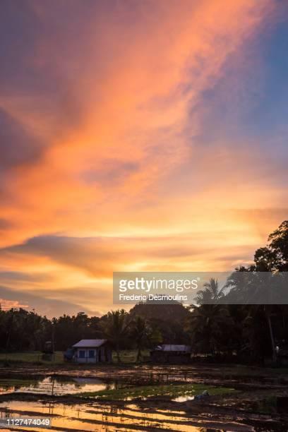 chocolate hills et rizières - paisajes de filipinas fotografías e imágenes de stock