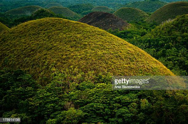 CONTENT] Chocolate Hills one of the most popular tourist attractions of the Philippines situated in Bohol island