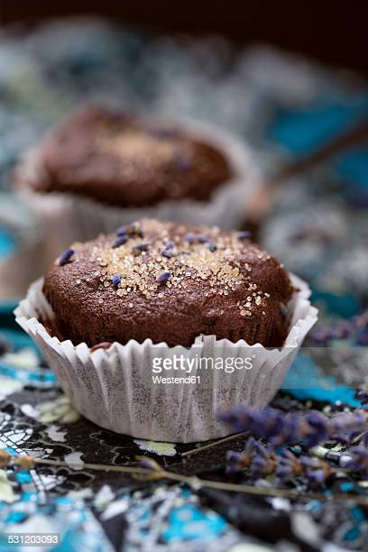 Chocolate muffins with lavender flowers and lavender sugar