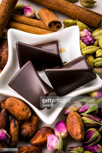 Chocolate pieces with cocoa beans and spices