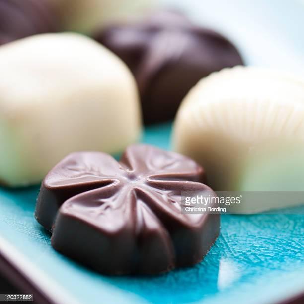 chocolate pralines - christina plate foto e immagini stock