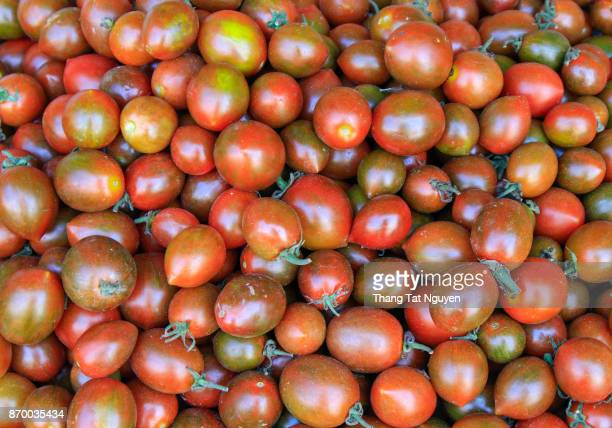 Chocolate tomatoes as colorful background
