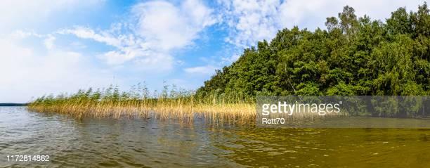 choczewskie lake choczewo pomerania poland