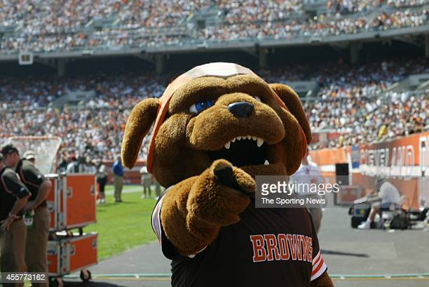 Chomps the Cleveland Browns mascot points at the camera during a game against the Cincinnati Bengals on September 11 2005 at the Cleveland Browns...