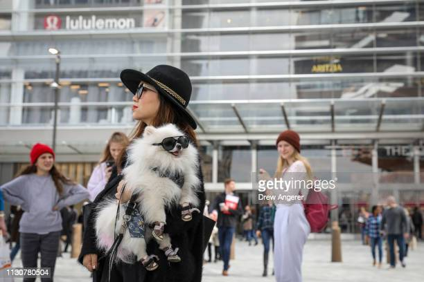 Chong Cha holds her dog Zuzu outside of 'The Shops' during the grand opening of phase one of the Hudson Yards development on the West Side of Midtown...