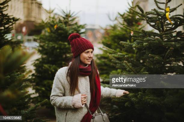 choosing a christmas tree - christmas tree stock pictures, royalty-free photos & images