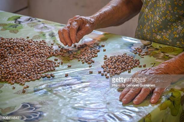 choosing beans - feijoada imagens e fotografias de stock