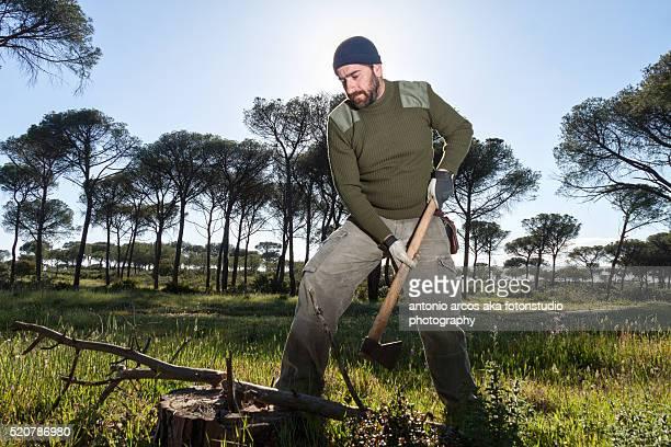 Chopping Down