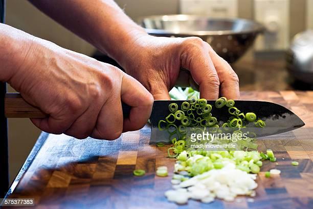 chopping green onions - cipollina foto e immagini stock