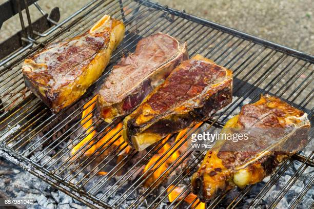 Chops on the barbecue Navarre Spain Europe