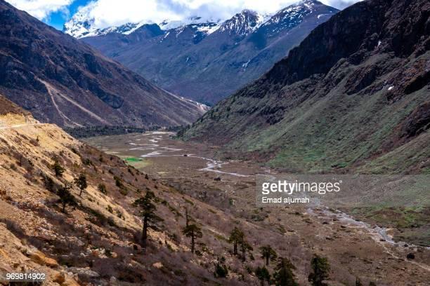 Chopta Valley, Lachen, Sikkim, India