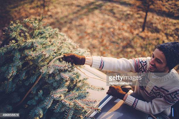 Ich wähle meinen Christmas tree